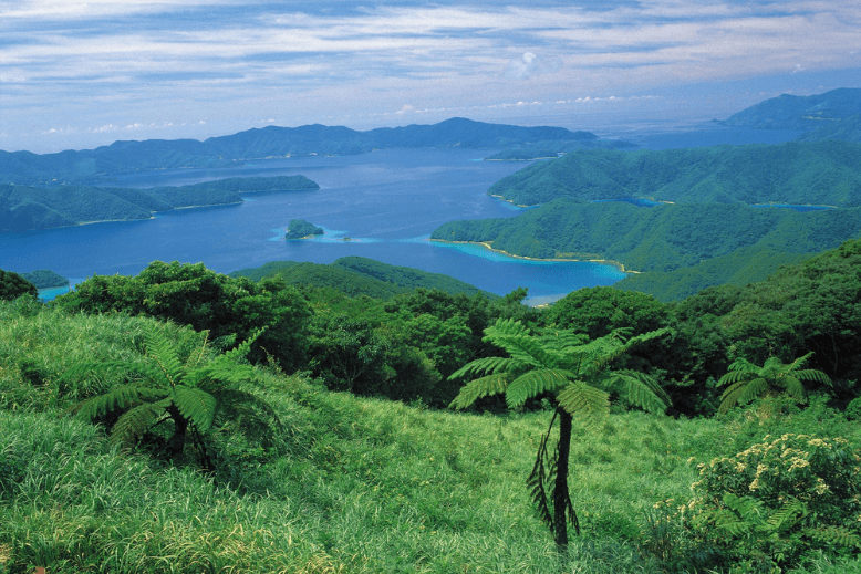 A view of Oshima Straits in Japan