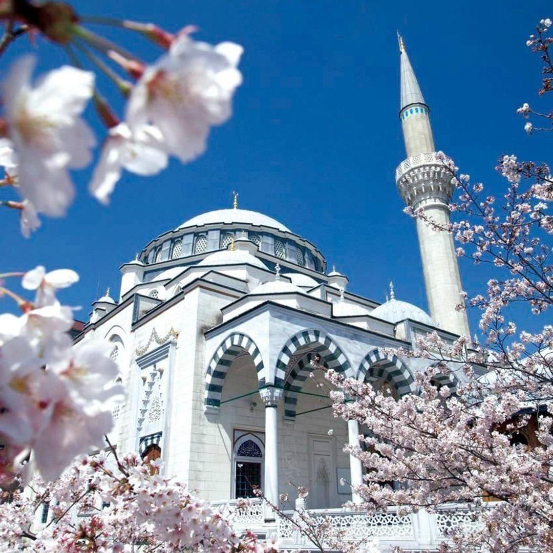 3 Masjid Dengan Arsitektur Terindah Di Jepang