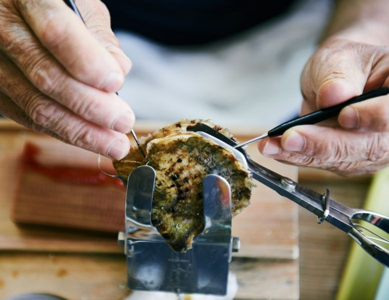 An Akoya pearl being removed from an oyster