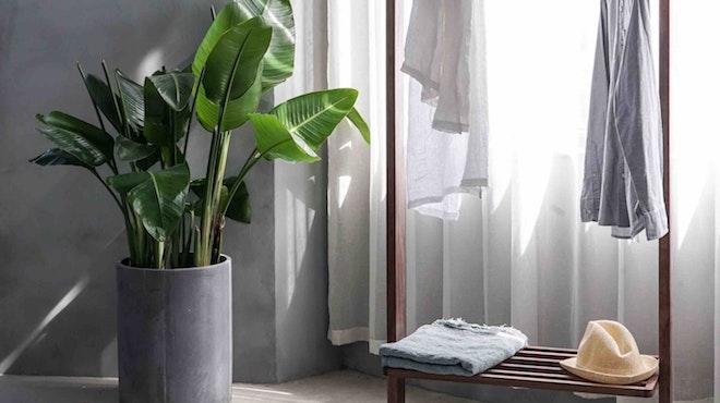 A balance of minimalism and comfort